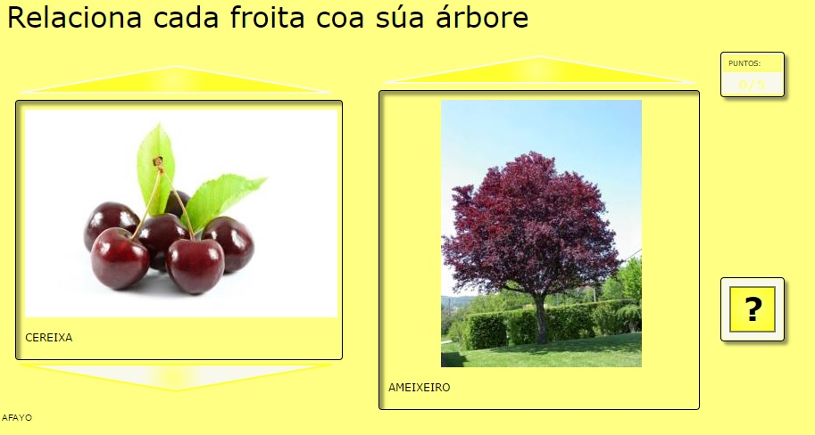 Árbores e froitos